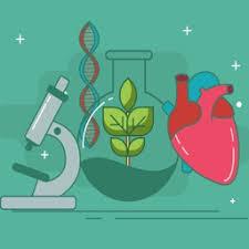 Science - Triple Science